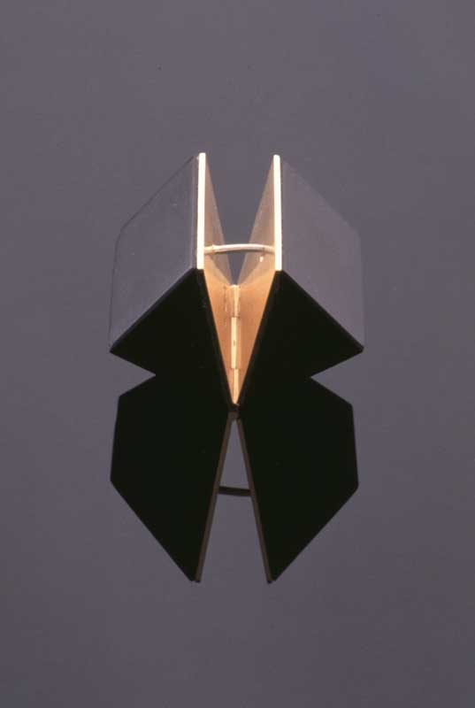 Submission by Diana Vincent for the 1996 cube American Jewelry Design Council Project
